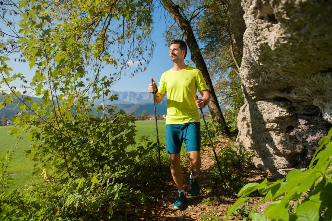 Alpine health region SalzburgerLand