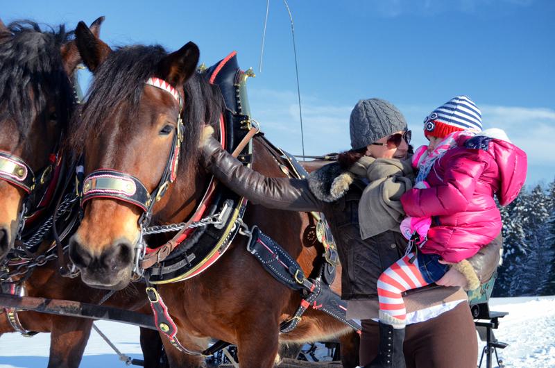 horse-drawn carriages-winter-abtenau-50