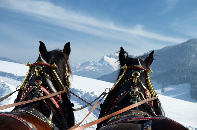 Pferdekutschen Winter Abtenau (4)