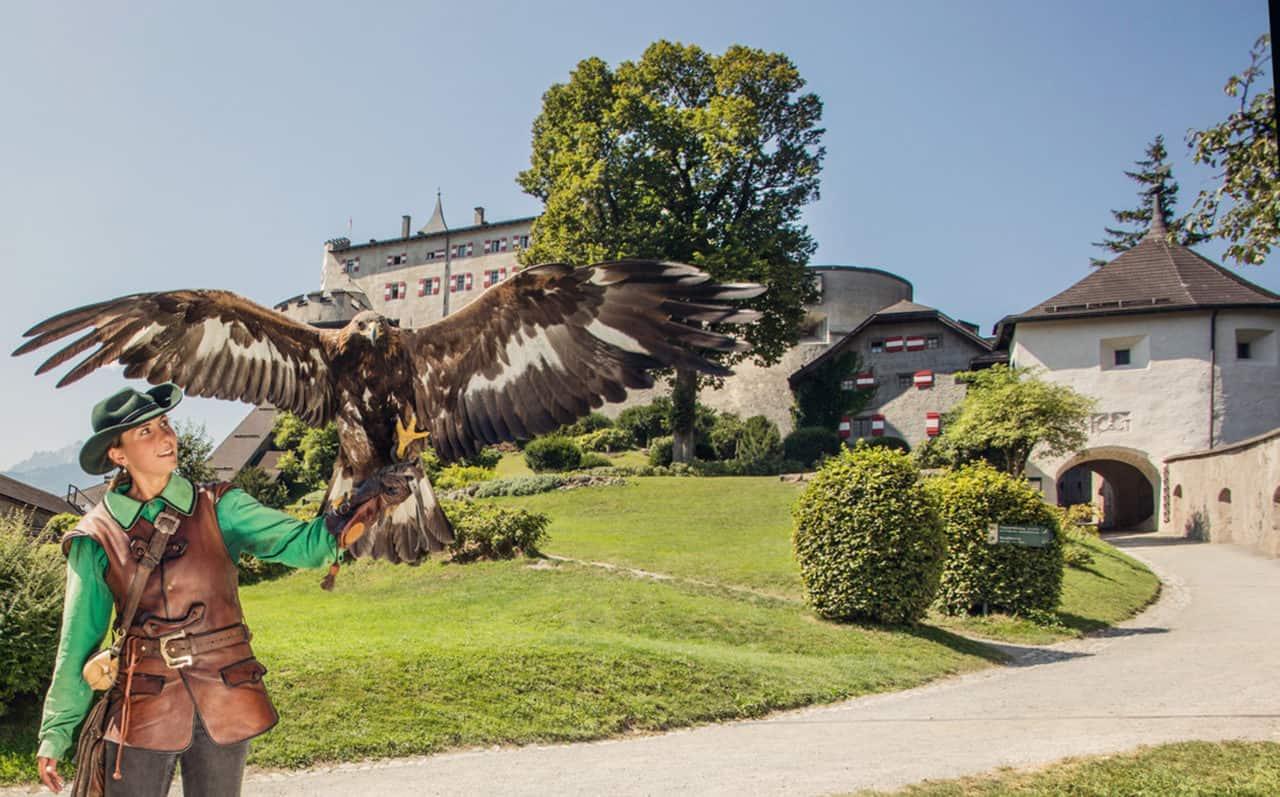 Burg Hohenwerfen Greifvogelschau (c)SalzburgerLand Tourismus